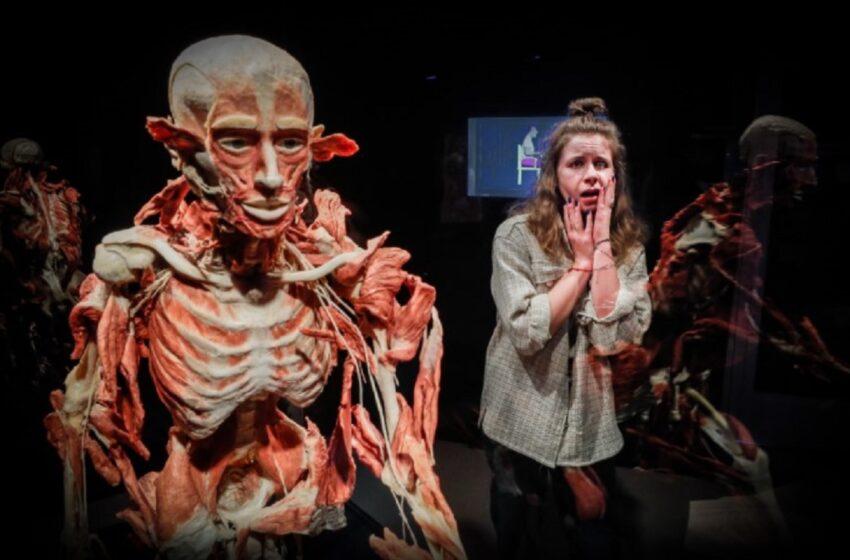 O expoziţia de cadavre umane a stârnit controverse în Rusia. Evenimentul este acum investigat de autorități