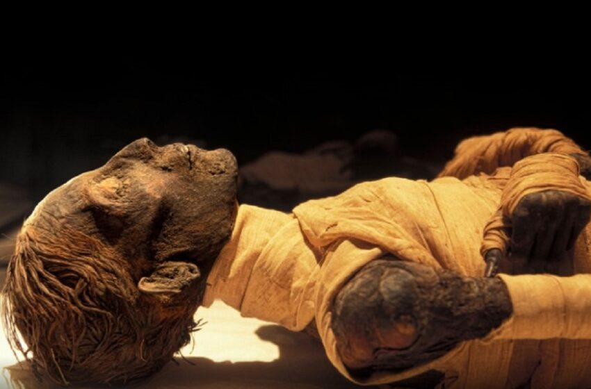 """(foto) Mumiile regale din Egiptul Antic vor fi scoase pentru prima dată pe străzile din Cairo. Egiptenii se tem deja de """"blestemul faraonilor"""""""