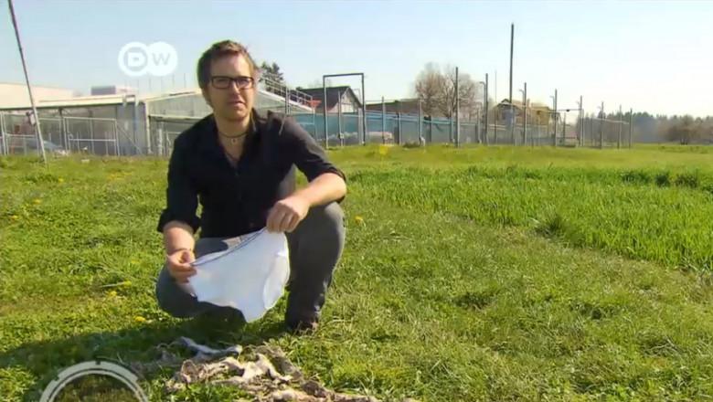 (video) De ce copiii din Elveția sunt învățați să-și îngroape lenjeria intimă în grădină