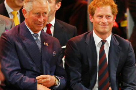 """Prințul Harry critică din nou Casa Regală și pe tatăl său pentru felul în care l-a crescut: """"Este multă durere"""""""