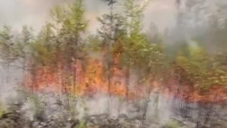 VIDEO Temperaturile record provoacă incendii uriașe în Siberia