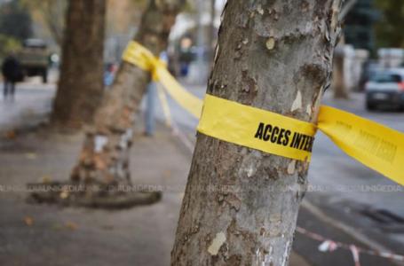 Urmărită și îmbrâncită pe străzile capitalei, dis-de-dimineață: Suspectul a fost dus la spitalul de psihiatrie