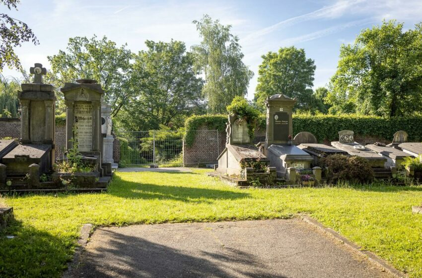 O fată de 14 ani și-a pus capăt zilelor după ce a fost violată de cinci tineri într-un cimitir, în Belgia
