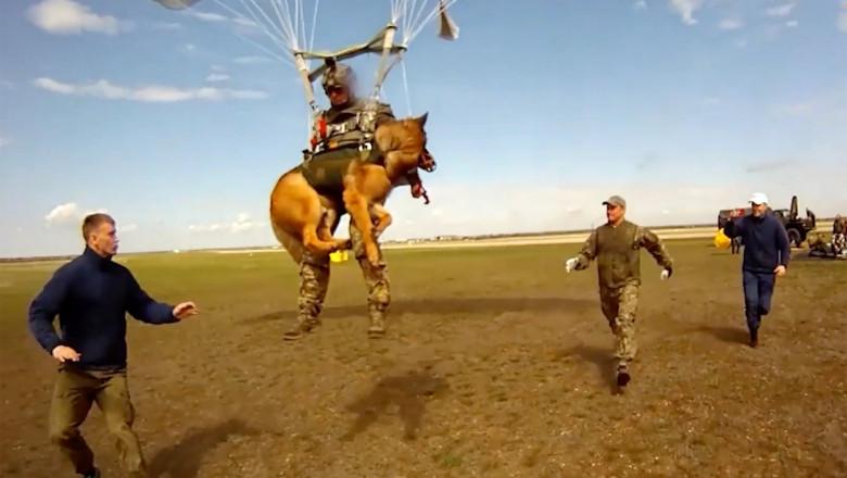 Armata Rusiei antrenează câini să sară cu parașuta. Imagini de la un exercițiu militar