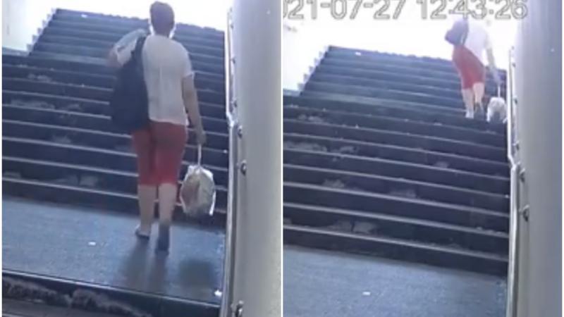 (Video) O femeie, surprinsă în timp ce aruncă gunoiul chiar pe scările pasajului