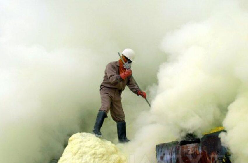 Cel mai periculos job din lume: Muncitorii riscă să moară până la vârsta de 30 de ani