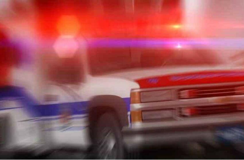 O fetiță de 3 ani a fost împușcată mortal de un băiat în vârstă de 5 ani