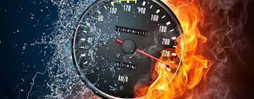 Top cele mai rapide viețuitoare de pe Terra