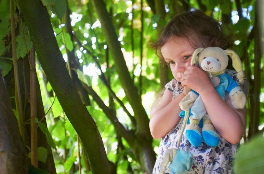 O fetiţă de un an, găsită în viaţă după trei zile de la dispariţie, într-o pădure plină de urşi şi lupi, în Rusia