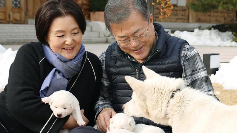 Președintele din Coreea de Sud sugerează că țara ar trebui să renunțe la carnea de câine