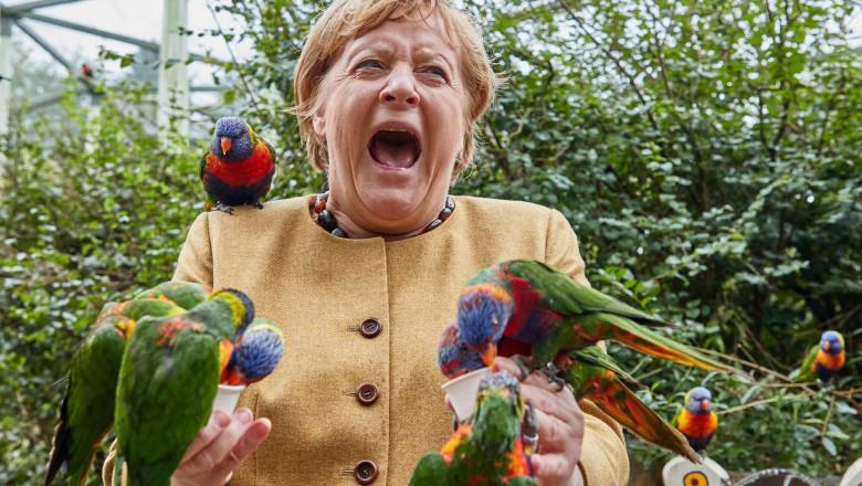 Angela Merkel a fost atacată de papagali! Imaginile sunt spectaculoase
