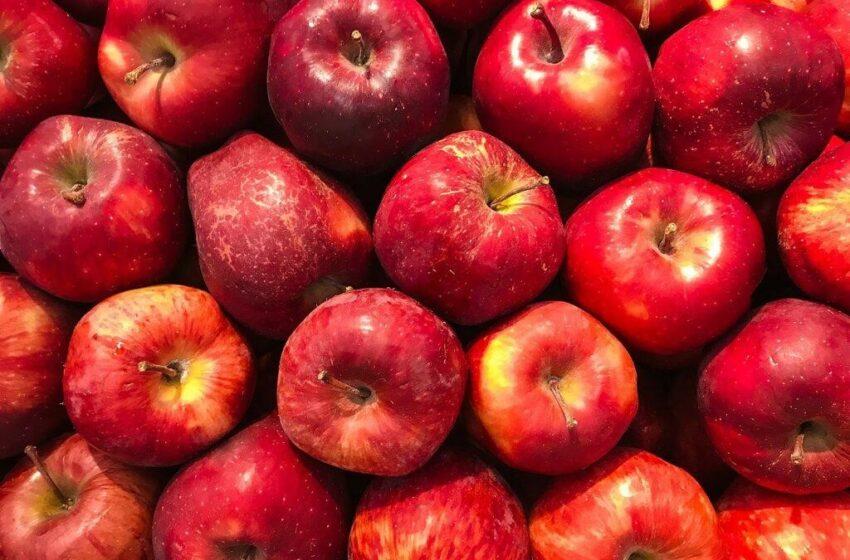 Sfaturi pentru includerea merelor într-o dietă sănătoasă