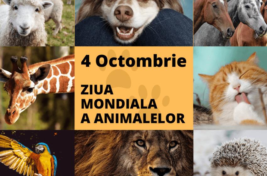 Astăzi marcăm Ziua mondială a Animalelor. Eveniment care ne îndeamnă să recunoaștem rolul animalelor în viața noastră
